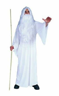 White Wizard Adult Mens Costume