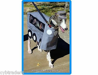 Funny Greyhound Dog Costume Refrigerator / Tool Box Magnet Gift Card Insert