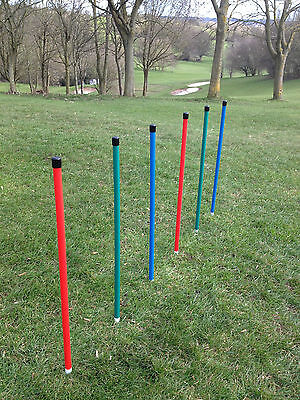 Dog Agility Coloured 6 Pole Basic Weave + 6 Pole Webbing by Jessejump Agility