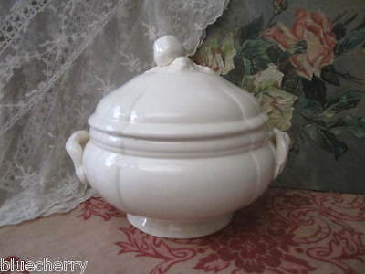Gorgeous Creamy White FRENCH SOUP TUREEN Sarreguemines Apple Scrolls end 19th