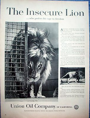 1959 Union 76 Oil Insecure Lion Prefers His Cage To Freedom Carnival Lion ad