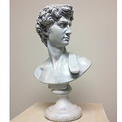 Statue Of David Bust  Michelangelo's famous classic statuary reproduction