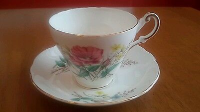 Regency  Tea Cup and Saucer  Bone China England Floral Pattern