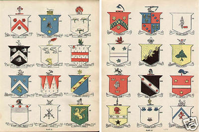 24 Irish Surnames IRELAND Coats of Arms 100+ year old Antique print Boyle Conway