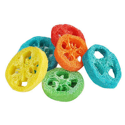 Funny New Natural Environmental Loofah Pet Dog Loofah Pet Tooth Cleaning Toy