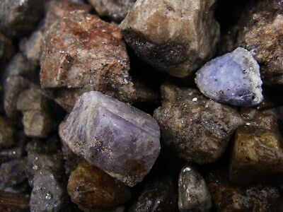 2000 Carat Lots of Unsearched Natural Tanzanite Rough + A FREE faceted Gemstone