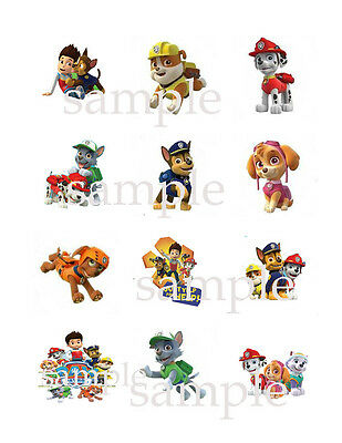 Assorted PAW PATROL Edible CUPCAKE Toppers Icing Image Circles 12