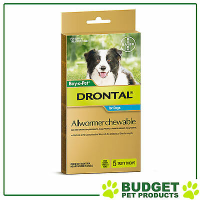 EXP: 02/20 Drontal Allwormer For Dogs Medium 3-10kg 5 Chews