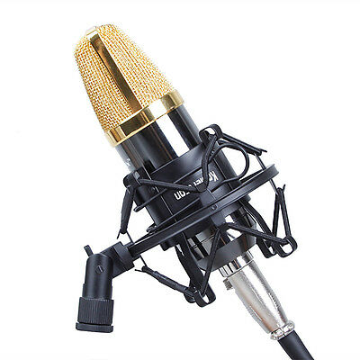 Professional Universal 50MM Microphone Shock Mount For Studio Sound Recording