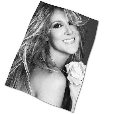 "Celine Dion Flag Banner 28"" NEW Breakaway The Power Of Love I'm Alive"