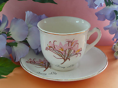 """Vintage Staffordshire Pottery Pretty Tea Set Duo """"Jersey Lily"""" Cup & Saucer VGC"""