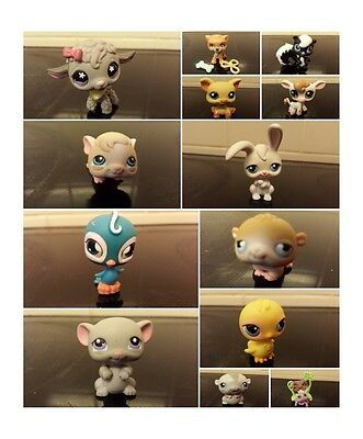 littlest pet shop skunk pig cow rabbit chick spider hamster mouse select which 1