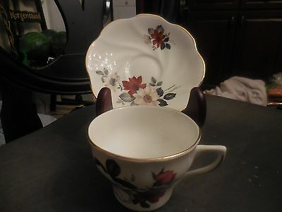 Vintage Royal Dover Tea Cup And Saucer Set White Floral Made In England