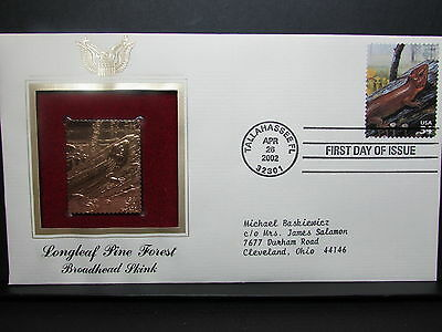 Broadhead Skink Longleaf Pine Forest First Day Cover Stamp Scott # 3611