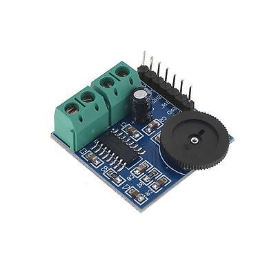 PAM8403 Volume Adjustment Double Track Power Amplifier Module for Arduino