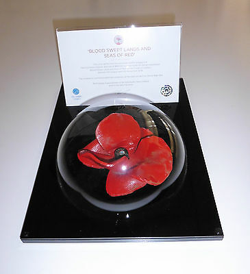 Table Top Tower Of London Poppy Display Case - Unique Dome Design