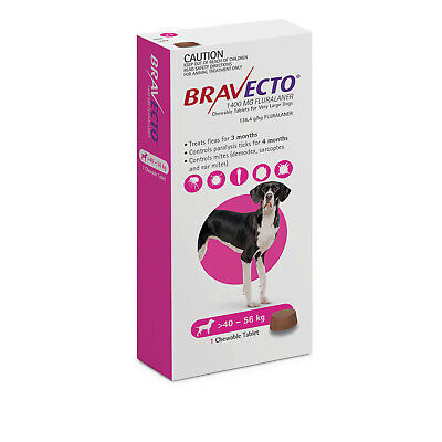 Bravecto Very Large Dog Purple Over 40kg Single Chew Flea & Tick Control