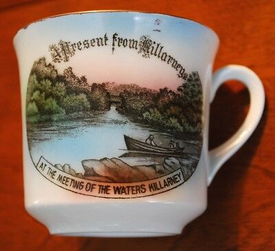 RARE Waters Of Killarney Ireland Scenic Porcelain Cup Schumann Bavaria 'Foreign'