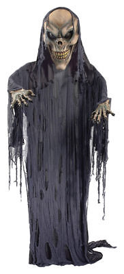 Morris Costumes Hanging Skeleton Small Decorations & Props 12 Ft. FM73589