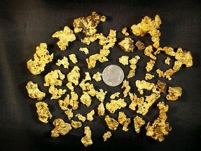 Some of the Best rich GOLD paydirt concentrates -------- 1/4 Pound!