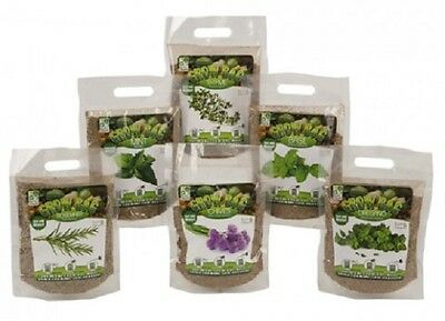 Wholesale-Resellers-30 X QUICK GROW HERBS WITH  MAGIC SOIL IN OPP BAG PLANTER