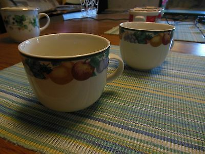 TEACUPS (2) - Intro Stoneware by Tienshan - made in China