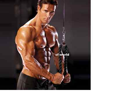 New Tricep Rope Push Pull Down Cord Multi Gym Bodybuilding Cable Attachment