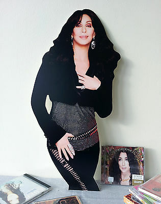 Cher CUTOUT Display STAND Standee NEW Dressed to Kill I Hope You Find It d2k