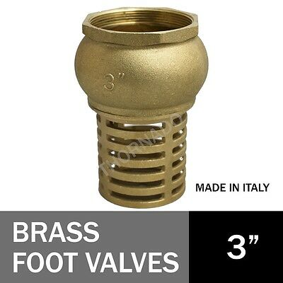Foot Valve 3 inch (80mm) Brass Hose Pipe Joiner One Way Check Valve Female BSP