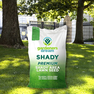 Gardeners Dream Shady Lawn Dark Area Under Trees Quality Assured Grass Seed