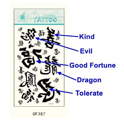 Chinese Word Good & Evil Good Fortune Tolerate Removable Temporary Tattoo GF387