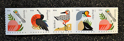 2015USA #4995-4998  Postcard Rate Coastal Birds PNC Coil Strip of 5 Mint  #P1111