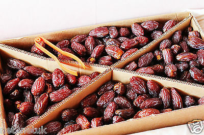 Best Quality Natural Medjool/Medjoul Dates, Khajoor  Best Gift for your family