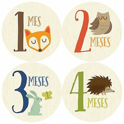 Monthly Baby Stickers, Spanish Monthly Baby Stickers, Baby Boy, Woodland