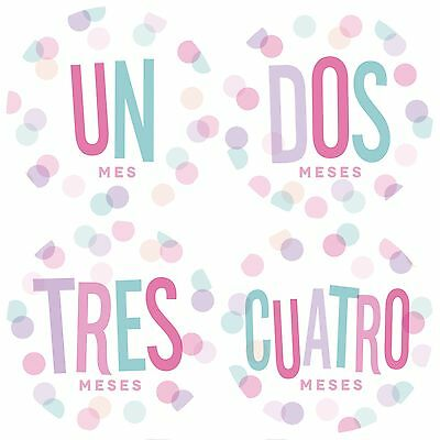 Monthly Baby Stickers, Spanish Monthly Baby Stickers, Baby Girl