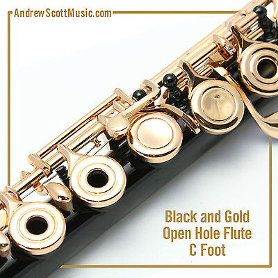 Flute - Black & Gold with Open Holes and C Footjoint - Masterpiece