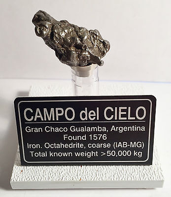 """""""RARE"""" 14.7 Gram Meteorite """"Campo Del Cielo"""" Museum Quality with stand and label"""