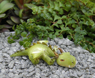 Miniature Dollhouse FAIRY GARDEN ~ Sleepy Mini Dragon Figurine ~ NEW