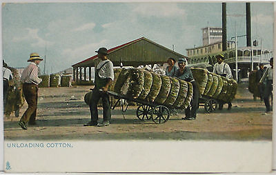 1900's BLACK AMERICANA Tuck Postcard ~ In the Land of Cotton ~ UNLOADING COTTON