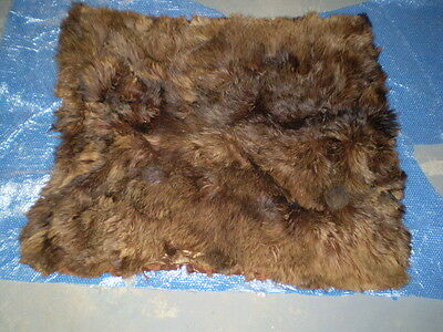 """Vintage Buffalo Robe from early 1900's used for sleigh rides 60"""" X 48"""""""
