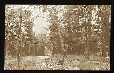 1909 postcard ~ by Scheuer ~ In The Woods