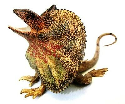 Australian Animal Frilled Lizard Gift Small Replica 90mm Long Approx. Collectibles Science & Nature