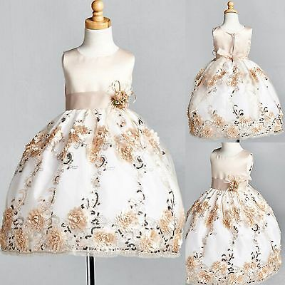Champagne Floral Satin Embroidery Dress ALL SIZES Flower Girl Holiday #09