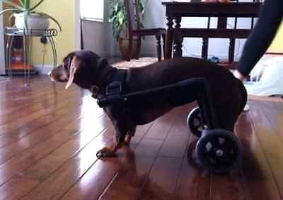 Dog Wheelchair/ /Fully Assembled!!!! Weighs Less then 3lbs!!