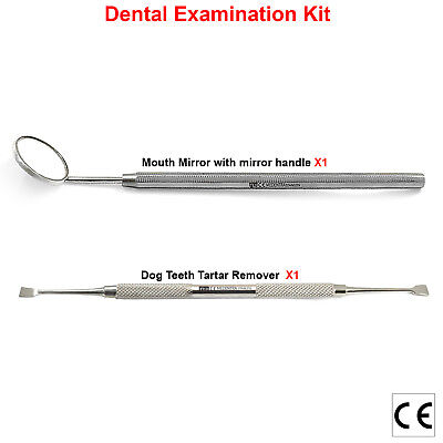Dog Teeth Scaler for Tartar and Plaque Remover with Mirror Handle and Mirror