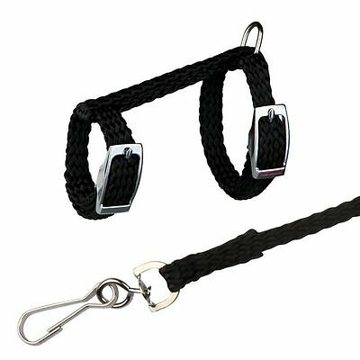 Trixie Rat & Ferret Black Nylon Harness & Lead Set 6262