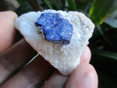 Lapis Lazuli LAZURITE - HUGE crystal with Pyrite and Calcite - Afghanistan NICE