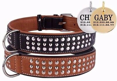 Studded Dog Collar Leather Custom Personalized ID TAG Brown Soft Padded S M L XL