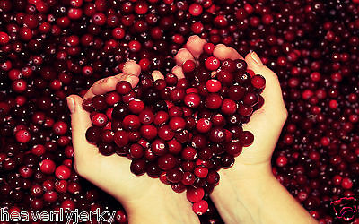 Cranberry Extract Powder -100% Natural - High In Antioxidants - 100g