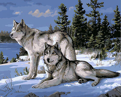 """Painting DIY Acrylic Paint By Number Linen Canvas 16""""x20""""- Snow Wolf"""
